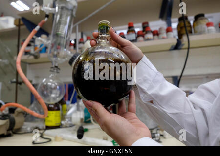 Jerusalem, Israel. 1st Sep, 2016. Christine Haj a post doctoral researcher holding a flask glassware containing - Stock Photo