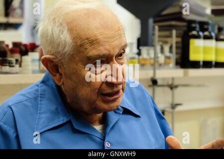 Jerusalem, Israel. 1st September, 2016. World renown Professor RAPHAEL MECHOULAM, 86, is depicted in his Laboratory - Stock Photo