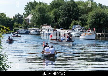 Swan Upping boats and skiffs on Thames River at Lalham Reach, Laleham, Surrey, England, United Kingdom - Stock Photo