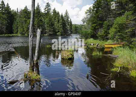 Yellow canoe rests on the bank of a beaver pond in the Green Mountains of Vermont - Stock Photo