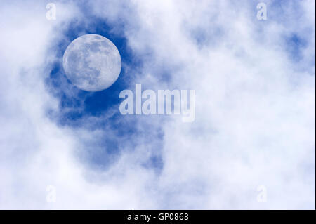 Moon clouds is a daytime scenic of wispy white cumulus clouds set against a deep blue sky as a full moon rises in - Stock Photo