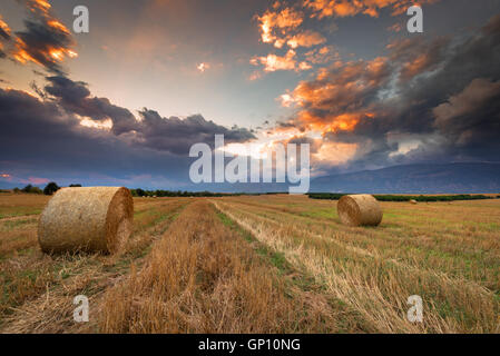 Sunset over farm field with hay bales. - Stock Photo