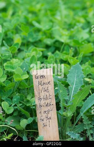 Green Manure sign at Ryton Organic gardens, Warwickshire, England - Stock Photo