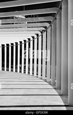 vertical perspective abstract gallery framed by columns shed by sun light in black-white format. - Stock Photo