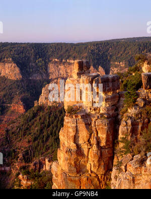 USA, Arizona, Grand Canyon National Park, Sunrise on Kaibab Limestone with Walhalla Plateau in the distance, from - Stock Photo