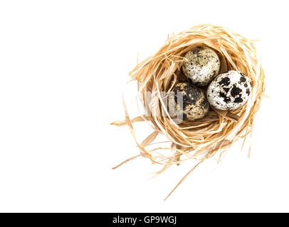 Three quail eggs in nest on white background with copy space - Stock Photo
