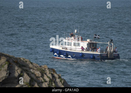 The Atlantic Explorer from Newquay steams around Towan Headland in Cornwall. - Stock Photo