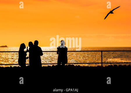 People seen in silhouette against an intense sunset over Towan Head in Newquay, Cornwall. - Stock Photo