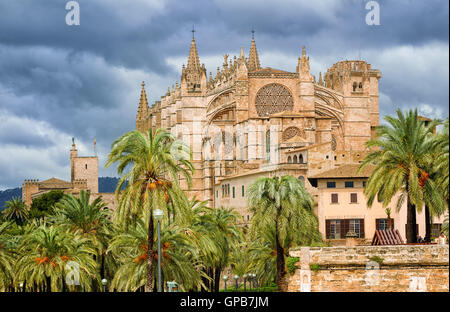 La Seu, medieval gothic cathedral of Palma de Mallorca, in the palm tree garden, Spain - Stock Photo