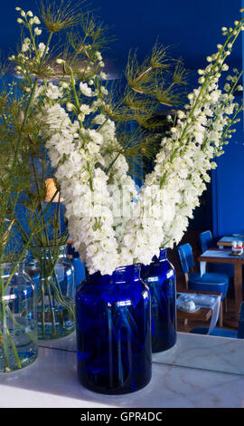 White Delphiniums in a blue vase reflected in mirror - Stock Photo