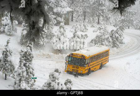 school bus stuck in snow - Stock Photo