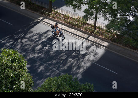 A tree lined avenue in the Spanish city of Seville with shadows of trees and a motor cyclsit cast on the asphalt - Stock Photo