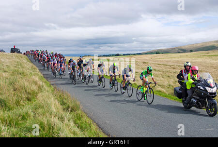 Caldbeck fells, Cumbria, UK. 5th September, 2016. Cumbria, Stage 2, Tour of Britain 05-09-16. On open moorland on - Stock Photo