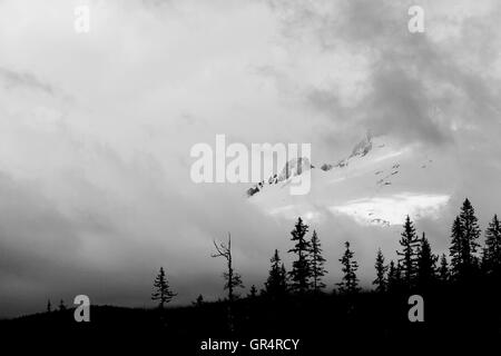 As the clouds blow in the raging winds you get a peak of the mountain towering over the trees. - Stock Photo