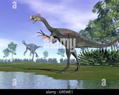 Gigantoraptor dinosaurs in nature - 3D render - Stock Photo