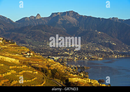 Autumn At The Riviera Vaudoise, View At Lavaux Vineyards And Vevey, Switzerland - Stock Photo