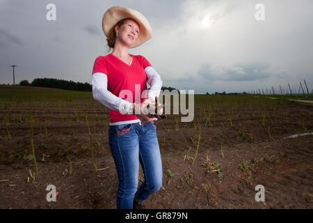 Asparagus Farmer - Stock Photo