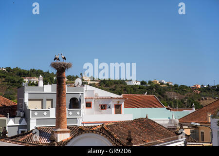Three Storks Standing In Horst On A Chimney, Silves, Algarve, Portugal, Europe - Stock Photo