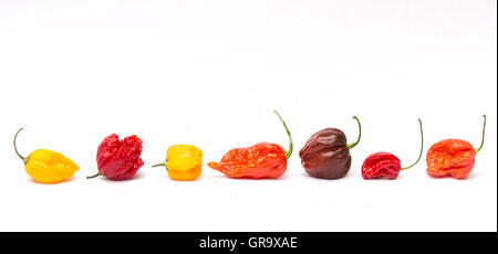 Hot Chillies on a white background - Stock Photo