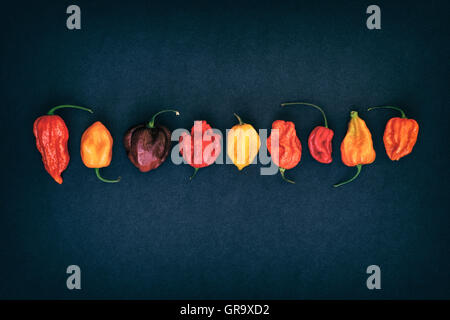 Hot Chillies on a dark background - Stock Photo