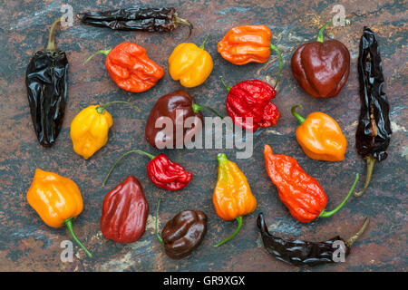 Hot Chillies on a textured slate background - Stock Photo