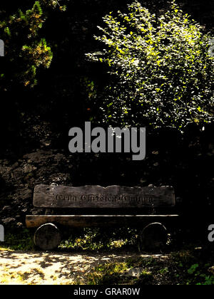 Wooden Bench Against Trees On Sunny Day - Stock Photo