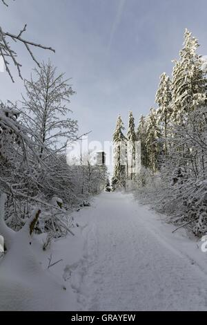 Radspitztower In The Franconian Forest In Winter - Stock Photo