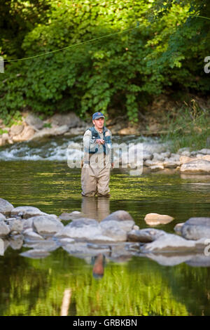 man fly fishing in river,  North America, Canada, Ontario - Stock Photo