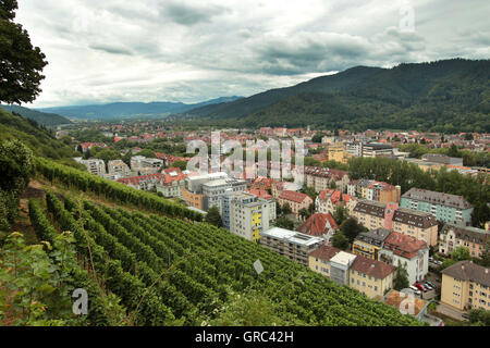 Freiburg With Black Forrest Mountain Range Overview - Stock Photo