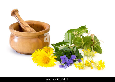 Different Medicinal Herbs With Mortar And Pestle On White Background - Stock Photo