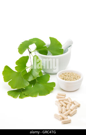 Fresh Ginkgo Leaves In A Mortar With Dried Herb And Capsules On White - Stock Photo