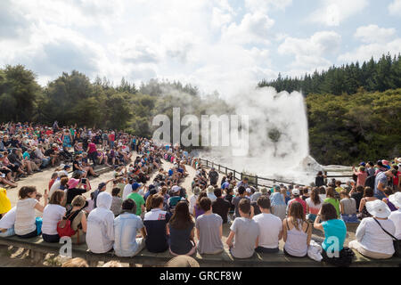 Rotorua, New Zealand - February 25, 2015: Tourists watching the eruption of Lady Knox geyser in Wai-o-Tapu National - Stock Photo