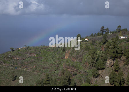 Rainbow Over Mountain Ridge With Pine Trees And Dragos In The Northwest Of La Palma. In The Background Atlantic - Stock Photo