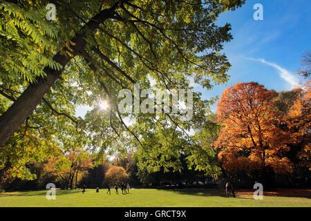 Fall Foliage At Park Englischer Garten In Munich - Stock Photo