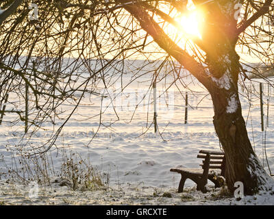 Wooden Bench In A Snowy Landscape - Stock Photo