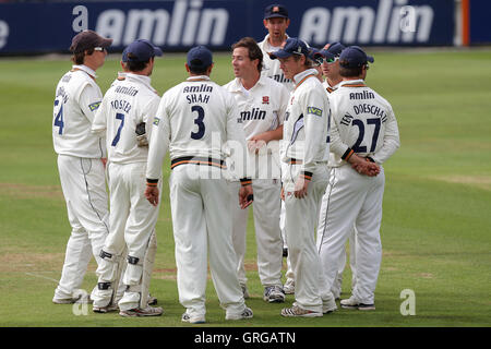 Essex players celebrate the wicket of Mark Ramprakash - Essex CCC vs Surrey CCC - LV County Championship Division - Stock Photo