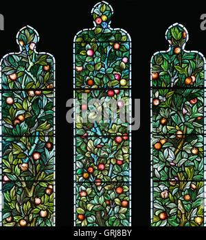 William Morris & Co. stained glass window depicting the 'Tree of Life', Church of St. Cybi, Holyhead, Anglesey, - Stock Photo