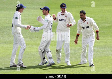Essex players celebrate the wicket of Kent batsman Mark Davies - Essex CCC vs Kent CCC - LV County Championship - Stock Photo