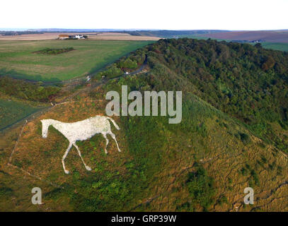 Aerial image of a white chalk horse cut into the side on High and Over, Seaford, Sussex, in the South Downs National - Stock Photo