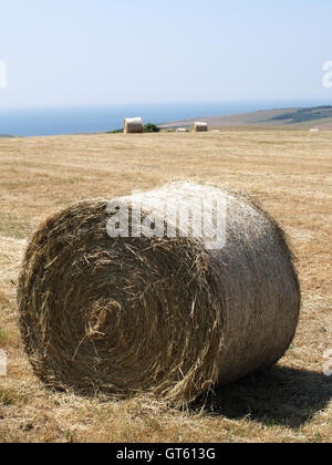 Hay bales in field off Beachy Head Way, Eastbourne, East Sussex overlooking English Channel - Stock Photo