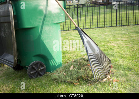 Raking up grass cuttings in spring during yard maintenance with a heap of clippings and a tined rake standing on - Stock Photo
