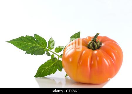 An isolated yellow and orange zebra heirloom tomato - Stock Photo
