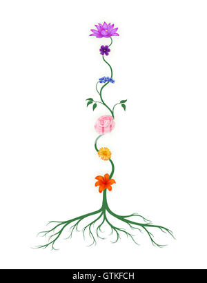 Chakra symbols represented as associated with chakras flowers and colors growing from a root chakra isolated illustration - Stock Photo
