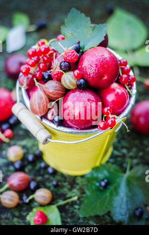Fruit and berries. - Stock Photo