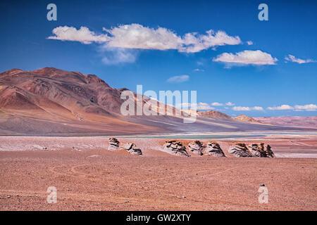 Salar Aguas Calientes, desert Atacama - Stock Photo