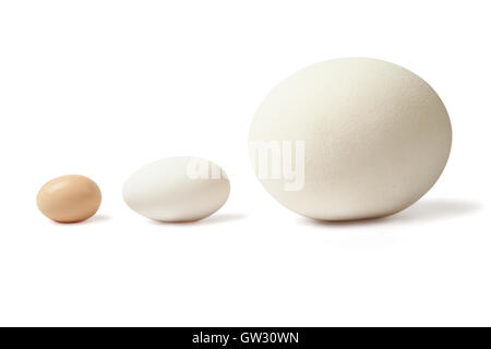Thre eggs lined - Stock Photo