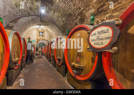 Montepulciano, Siena Province, Tuscany, Italy.  Cellar in Cantina Ercolani with barrels of maturing Vino Nobile - Stock Photo
