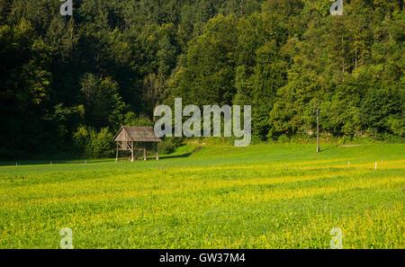 Hayrack near Bohinj, Slovenia - Stock Photo