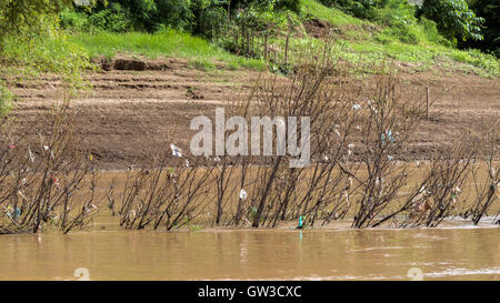 Garbage 'flowers along the Mekong River, Laos - Stock Photo