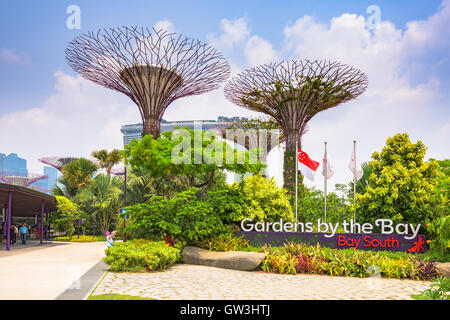 Gardens by the Bay in Singapore. - Stock Photo